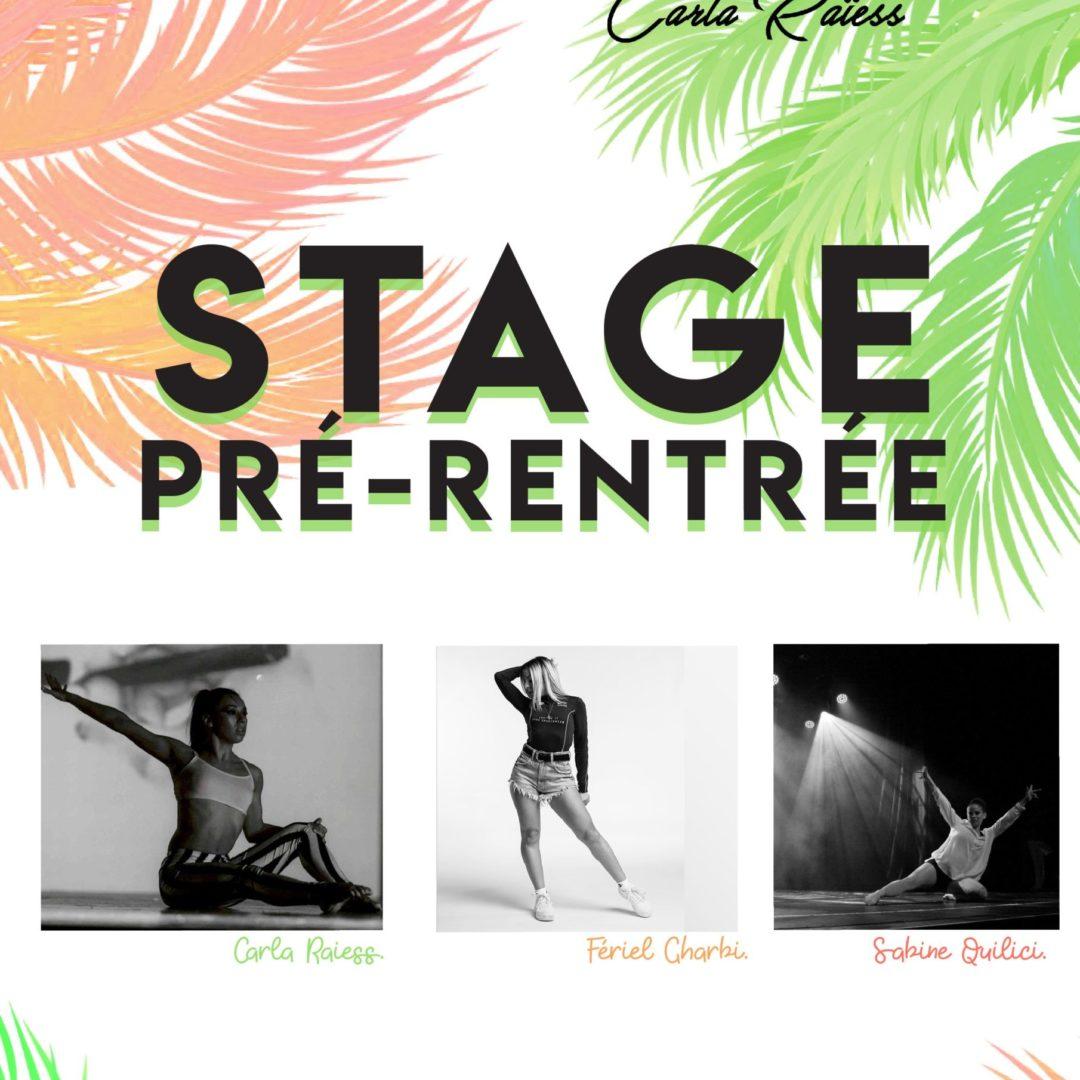 Stage de danse : 28 et 29 Août